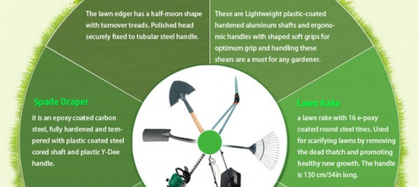 Infographics for gardening space